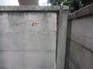 万年塀にご注意
